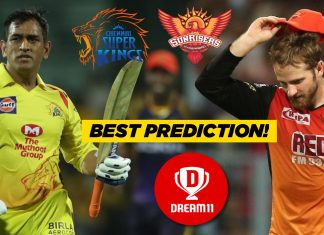 IPL 2019, 33rd Match: CSK vs SRH Best Dream11 Team Today Predictions