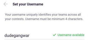 cricplay username selection