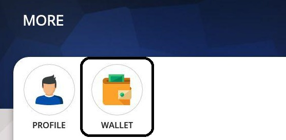 playerzpot wallet