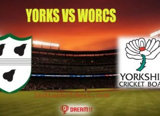 YORKS Vs WORCS Dream11 Team Prediction, English T20 Blast 2019
