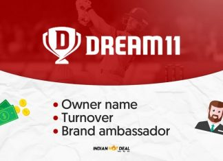 Dream11 Owner Name, Turnover & Brand Ambassador