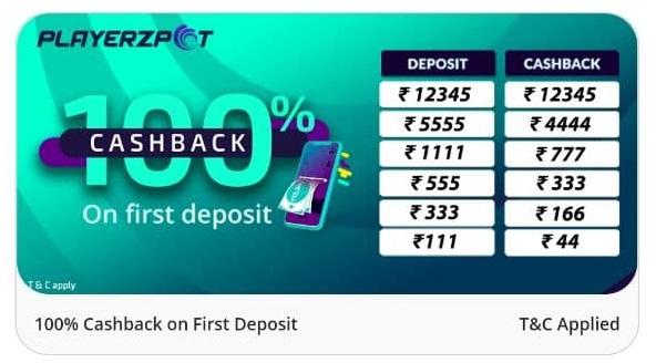playerzpot add money promo code