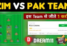 ZIM vs PAK Dream11 Team Prediction 2nd T20 Match (100% Winning Team)