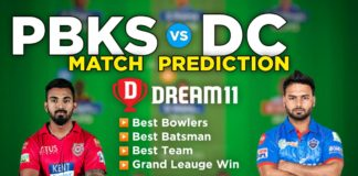 PBKS vs DC Dream11 Team Prediction 29th Match IPL 2021 (100% Winning Team)